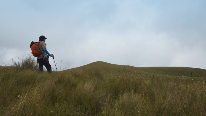 Man holding a trekking pole at the top of the mountain