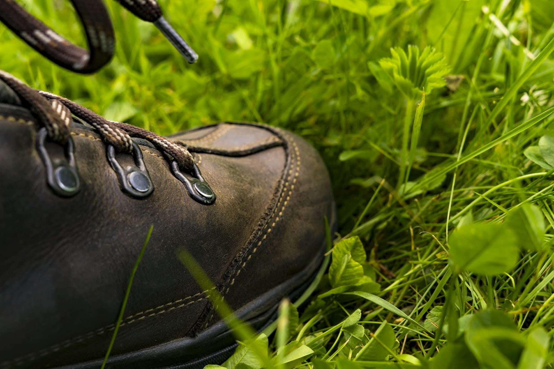 Hiking Boots Grass